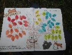 松山第28団写真2